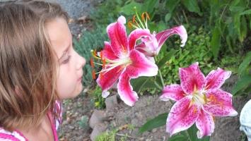 My niece enjoying star-lilies