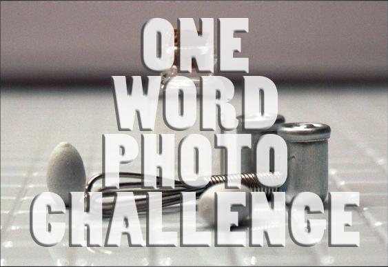 One Word Photo Challenge:Grey